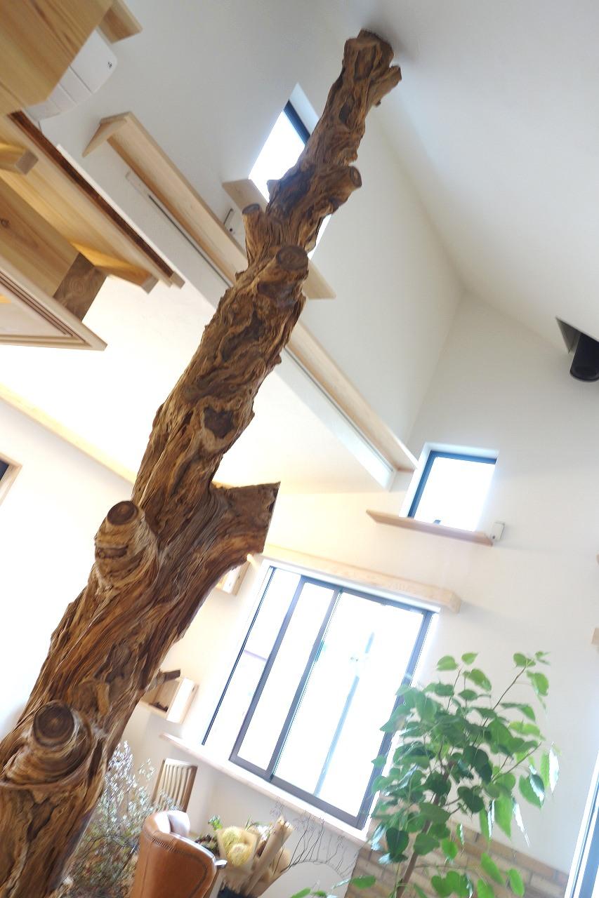 http://www.moku2house.jp/0002.jpg