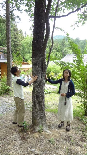 http://www.moku2house.jp/DSC04627.jpg